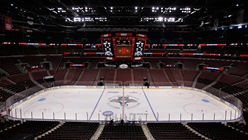 bb&t center- sheraton suites fort lauderdale plantation